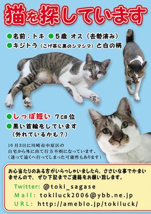 Toki_chirashie38090webe38091